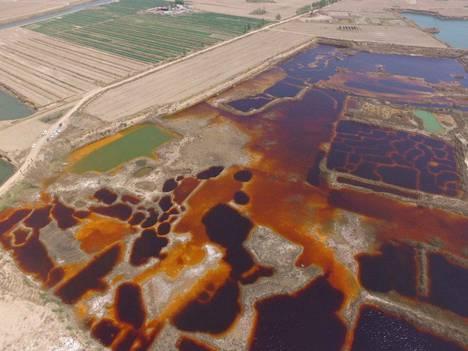 Saastuneen veden värittämiä läikkiä näkyy torstaina kuvatussa ilmakuvassa Kiinan Hebein maakunnassa sijaitsevan Langfangin alueella.