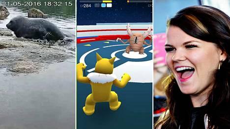 Googlen hauissa suosittuja ovat Suomessa tänä vuonna olleet muun muassa WWF:n norppalive, Pokémon Go -peli ja laulaja Saara Aalto.