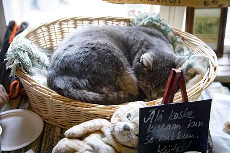 Ravintola Vanhan pehtoorin kissa osasi ottaa rennosti väenpaljoudesta huolimatta.