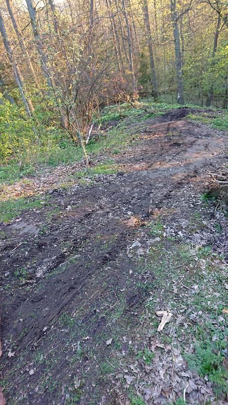 Maastopyörät ovat tuhonneet herkkää maastoa Tammistossa.