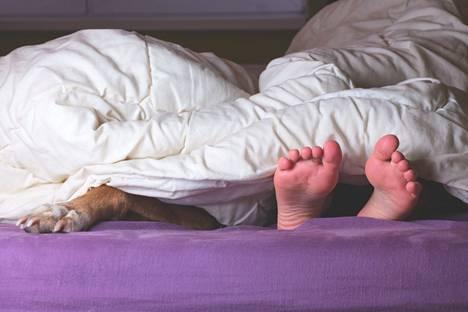 Toiset nukkuvat parhaiten lähekkäin, toiset erillään.