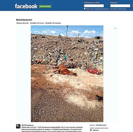 Espoolaisella kaatopaikalla kuvattu kuollut hevonen herätti keskustelua Facebookissa. Ruutukaappaus on Aki Ruostepuron sivulta.