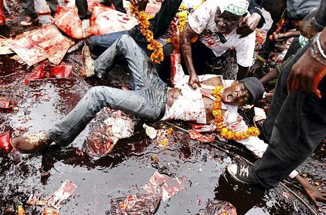 Mielenosoittaja makasi eläinten veressä parlamenttitalon edessä Nairobissa Keniassa. Parlamentti äänesti omien palkkojensa nostosta lahjonnan kitkemiseksi. Uusi palkka on 130 kertainen verrattuna maan minimipalkkaan.
