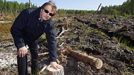 Profinin perustaja Martti Haapala ihmettelee, miksi metsiä hakataan aukeiksi ennen kuin puut ovat ehtineet kypsään ikään.