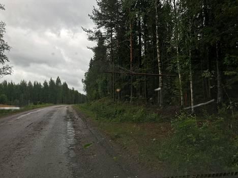 Päivö-myrskyn tuhoja Palonurmessa Pohjois-Savossa keskiviikkona.