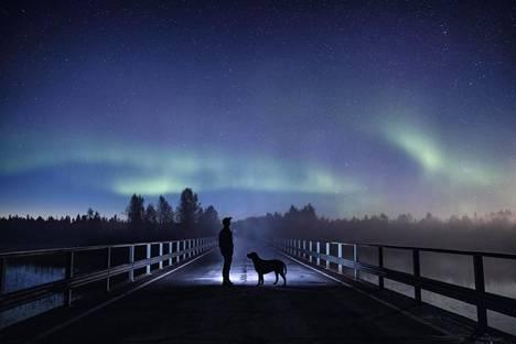 Ensimmäiset revontulet nimettiin suomalaisen valokuvaajan Harri Tarvaisen mukaan. Harri-revontulia voitiin nähdä 11.–13. syyskuuta.