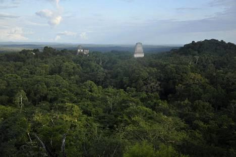 Guatemalan Tikalissa on näkyvissä maya-temppelien raunioita. Nyt tutkijat ovat löytäneet lasertekniikan avulla 60000 ennestään tuntematonta rakennelmaa, jotka ovat tiheän sademetsän peitossa.