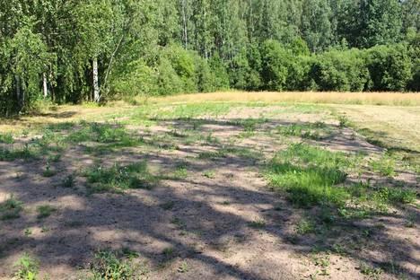 Kesähelteet näyttävät kuihduttaneet Vantaan Martinlaakson Jokiuomanpuiston niityn.