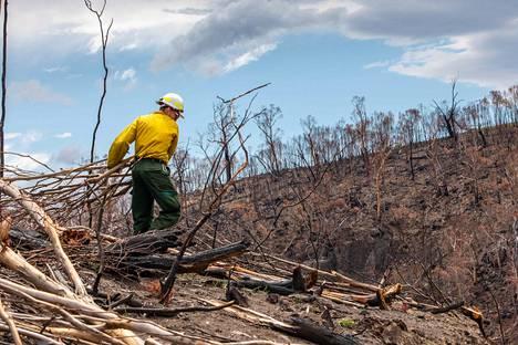 Yhdysvalloista auttamaan tullut palomies raivasi raunioita Itä-Gippslandissa Victoriassa.