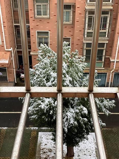 Ding Yi lähetti kuvan maisemasta, jota hän on nyt katsellut ikkunastaan Xiaoganissa yli kolme viikkoa.