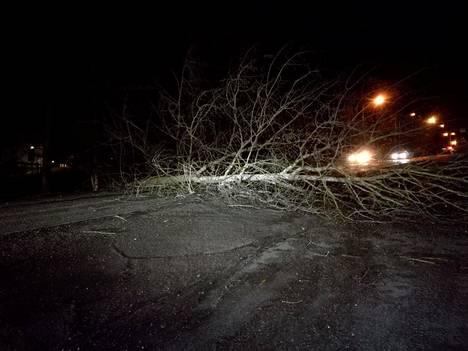 Sähköt menivät poikki ja liikenne jumiutui maanantai-iltana Espoon Träskändan puistotiellä, kun tuuli kaatoi puita.