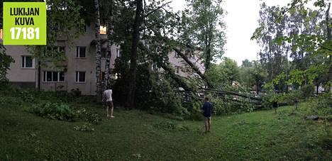 Käpylässä kolme puuta kaatui kerrostaloa vasten. Ikkunoita rikkoutui.
