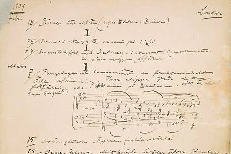 Sibeliuksen päiväkirjan sivu.