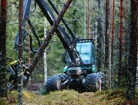 Viime vuonna parhaiten pärjäsivät puuta korjaavat koneyrittäjät.