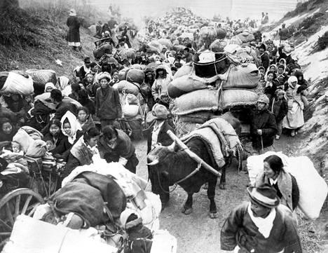 Korean sota aaltoili kolmen vuoden aikana yli koko niemimaan ja vaikutti kymmenien miljoonien ihmisten elämään. Pakolaisia liikkeellä sodan alkuvaiheessa kesäkuussa 1950.