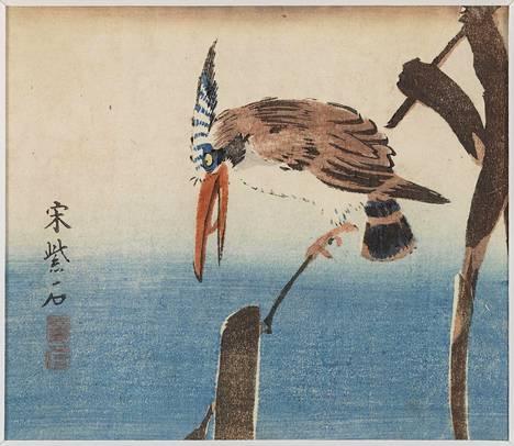 Kuningaskalastaja. Tuntemattoman taiteilijan puupiirros (1800–1850).