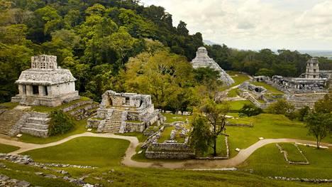 Palenque on yksi parhaiten säilyneitä muinaisia mayakaupunkeja. Se sijaitsee eteläisessä Meksikossa Chiapasin osavaltiossa.