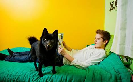 Jere Leppänen sairastui narkolepsiaan yli vuosi sen jälkeen, kun hän oli saanut influenssarokotuksen. Nemo-koira vahtii Leppäsen lukurauhaa.