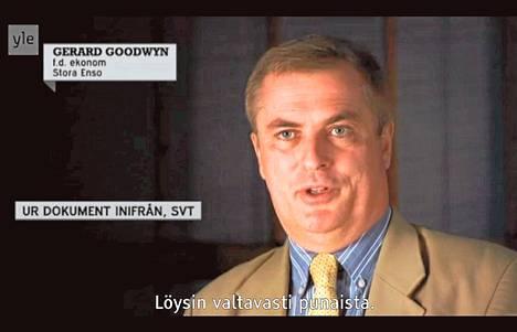 Stora Enson entinen laskentapäällikkö Gerard Goodwyn esitti väitteitään Ruotsin yleisradioyhtiön ohjelmassa, jonka Yleisradio esitti viime kesänä. Hänen mielestään kirjanpidossa oli paljon huomautettavaa.