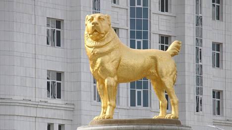 Kullattu koirapatsas Aškabatissa kunnioittaa paikallista alkuperäisrotua.