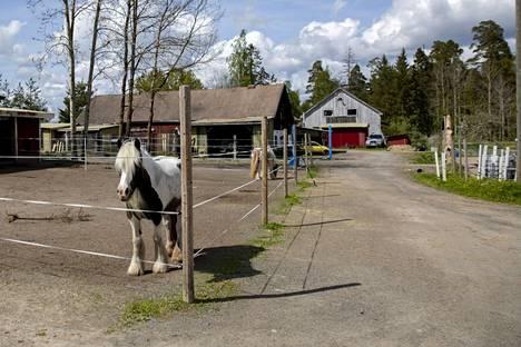 Poliisi tutkii naantalilaiseen SR Talli -nimiseen hevostilaan liittyviä rikosepäilyjä.