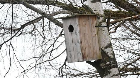 Finnoon lintukosteikko on lintuharrastajien suosiossa. Alueelle on tehty myös linnunpönttöjä.