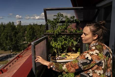 Sirja Eskelinen rakensi itse kasvihuonehyllyn parvekkeelleen. Kokonaista kasvihuonetta ei aivan olisi saanut mahdutettua.