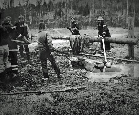 Keimolan Isosuohon uponnutta Mikke-hevosta kiskottiin takaisin tielle kahdeksan miehen voimin noin 30 vuotta sitten.