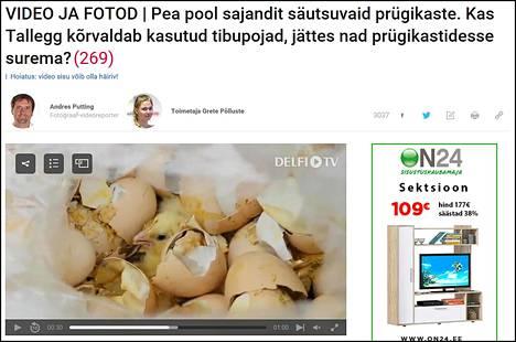 Virolaisella Delfi-uutissivustolla julkaistulla videolla näkyy elävä kananpoika munankuorien joukossa roskasäiliössä. Kuvakaappaus.