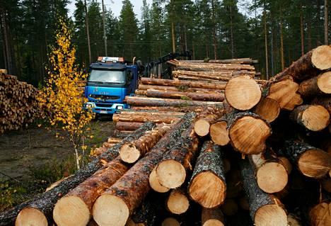 Yksityiset metsänomistajat ovat vaatineet puunostajilta 17 miljoonan euron korvauksia kartellin vuoksi.