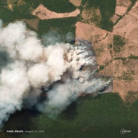 Satellittikuva metsäpalosta Paran alueella viime tiistaina.