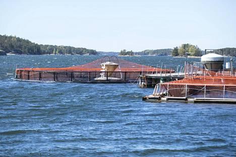 Kalankasvattamoiden aiheuttama vesistökuormitus on pienentynyt huimasti huippuvuosista. Kuvassa kalankasvatusta Saaristomerellä Rymättylässä.