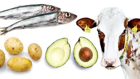 Ruoan eettisyyden ja ekologisuuden pohdintaan vaikuttavat monimutkaiset ja osin ristiriitaiset tekijät.