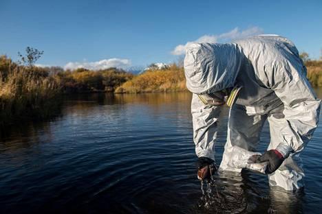 Myös Venäjän Greenpeace on kerännyt Kamtšatkasta näytteitä.