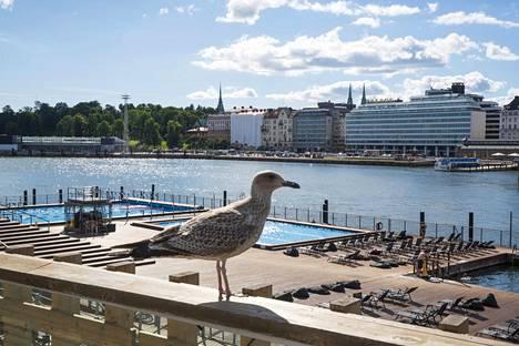 Uutta arkkitehtuuri- ja designmuseota on suunniteltu Helsingin Eteläsatamaan. Kuvassa etualalla Allas Sea Pool vastarannalla.