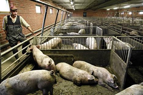 Keskon Tuottajalle kiitos -kampanjalla tavoitellaan 500000 euron tuottoa, joka maksetaan lyhentämättömänä siankasvattajille. HS vieraili viime vuonna Jere Ojasen sikatilalla.
