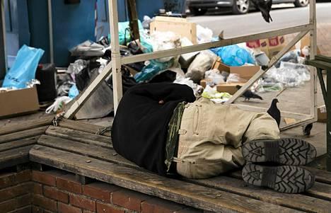 Koditon nukkui roskisten vieressä Ateenassa 7. marraskuuta 2012.