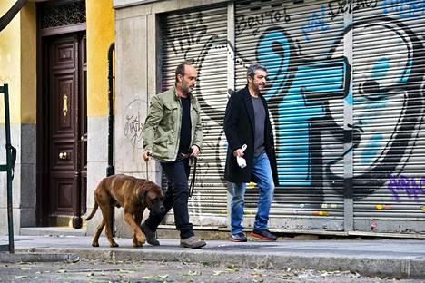 Tomás (Javier Cámara) matkustaa Kanadasta Madridiin ollakseen avuksi syöpään sairastuneelle kaverilleen Juliánille (Ricardo Darín).