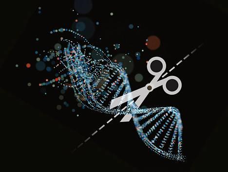 Ihmisen perimä on pitkä ja monimutkainen. Sen muuntelu on vielä riskialtista, koska emme tunne sen toimintaa täysin.