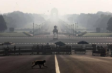 Intian Kaupungit