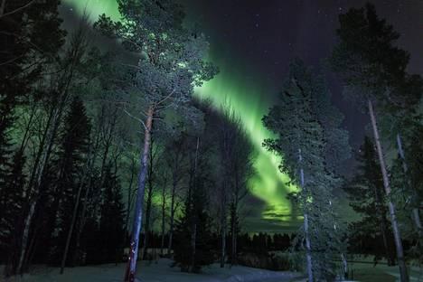 Geofyysikko Thomas Ulich kuvasi tavallisten revontulten näytelmää Sodankylän taivaalla tammikuun lopulla.