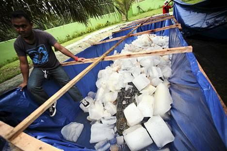 Kuolleen krokotiili Lolongin yli kuusimetristä ruumista säilöttiin jäihin Bunawanissa Filippiineillä maanantaina.