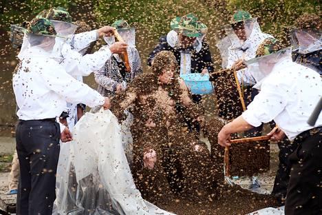 Gao Bingguon päälle laskettiin ennätysmäärä mehiläisiä Taianissa Kiinassa 27. toukokuuta. 326 000 mehiläistä on uusi Guinnessin ennätys.