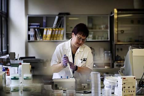 Salmonellaa tutkitaan Tullilaboratoriossa.