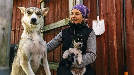 All Huskies Oy:n Pauliina Tirkkonen, Trine ja pennut Skye ja Sigrid Kittilässä.
