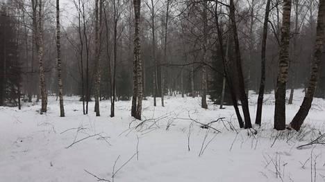 Uutelan joiltakin niittymailta on jo ennätetty poistaa pieniä puita.
