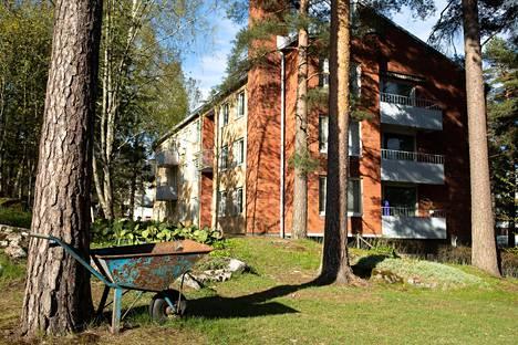 Helsingin Kivihaka on pieni asuinalue metsän keskellä.