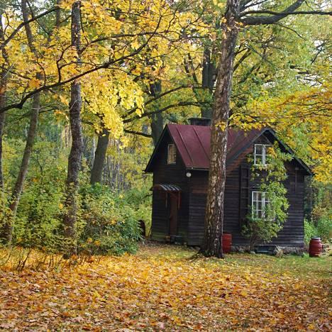 Edit Grönin sympaattinen mökki oli vierailijoiden valokuvaama kohde.