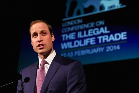 Prinssi William puhui Lontoossa viime viikolla luonnonvaraisten eläinten laitonta kauppaa vastustavassa konferenssissa.