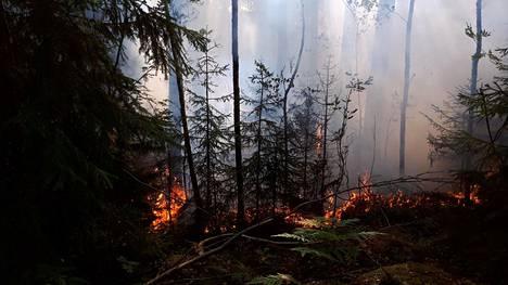 Eilen tiistaina paloi noin hehtaarin alue Kytäjällä.